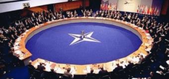 Без США и Турции НАТО будет лучше