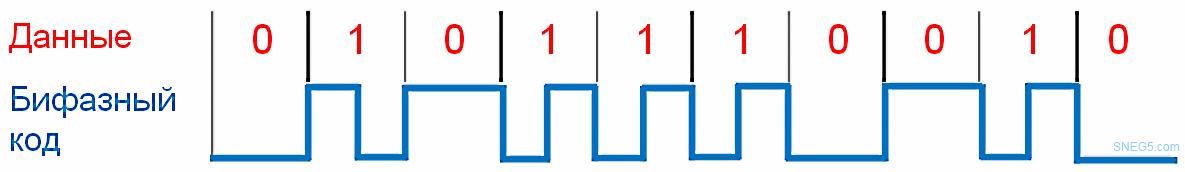 Рис. 1.15. Структура бифазного кода