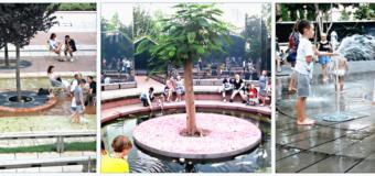 Парк «Краснодар», он же — парк Галицкого