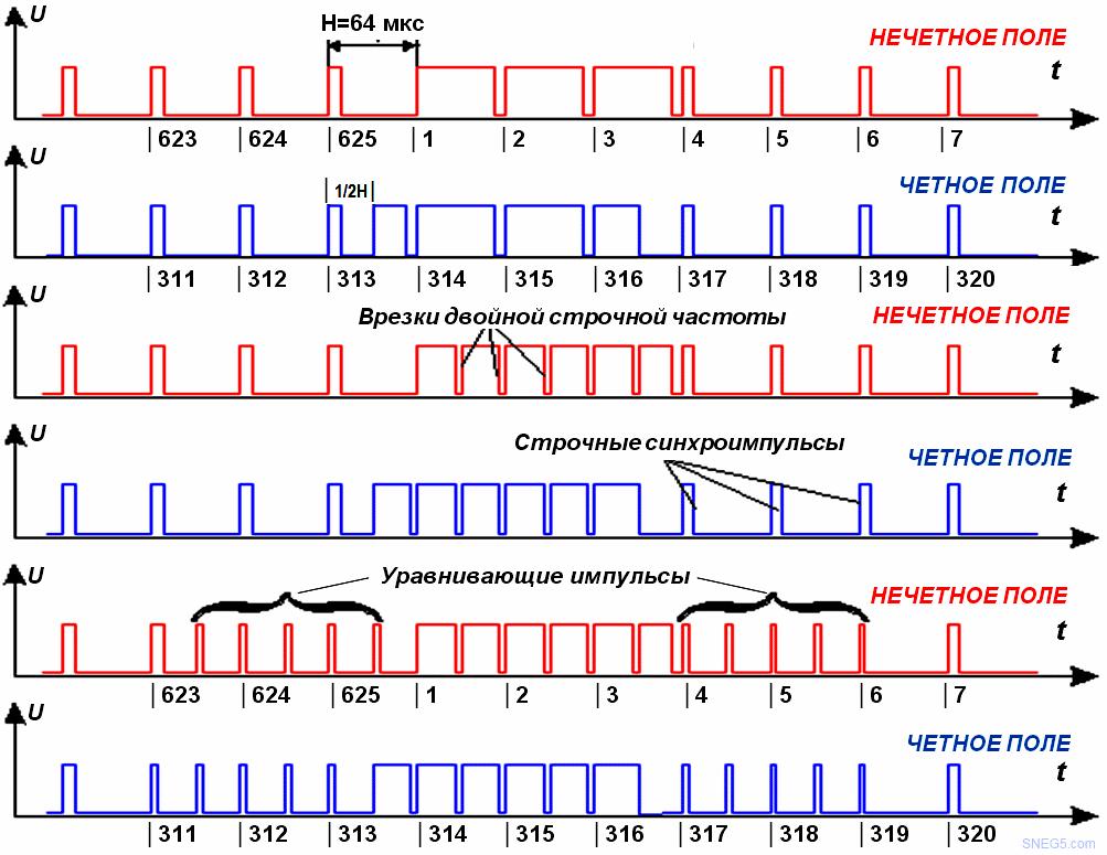 Сигналограмма импульсов в четном и нечетном полях