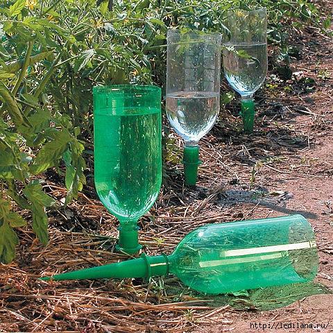 Как сделать поливалку из пластиковой бутылки