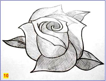 рисуем розу_10