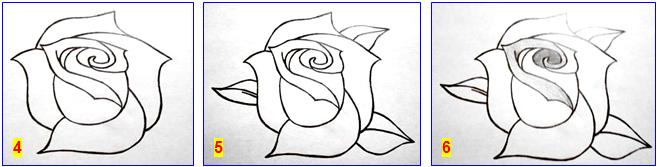 рисуем розу_4-6