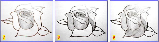 рисуем розу_7-9