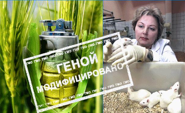 ГМО как биологическое оружие