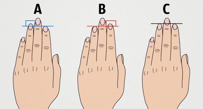 ладонь и палец