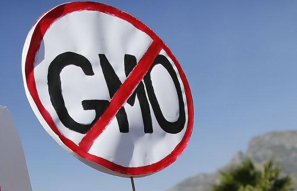 ГМО под запретом