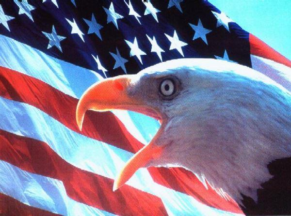 Военные интервенции США