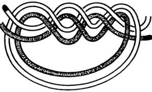 Как завязывать узлы 403 Водяной узел