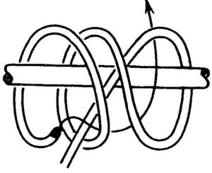 Двойной констриктор
