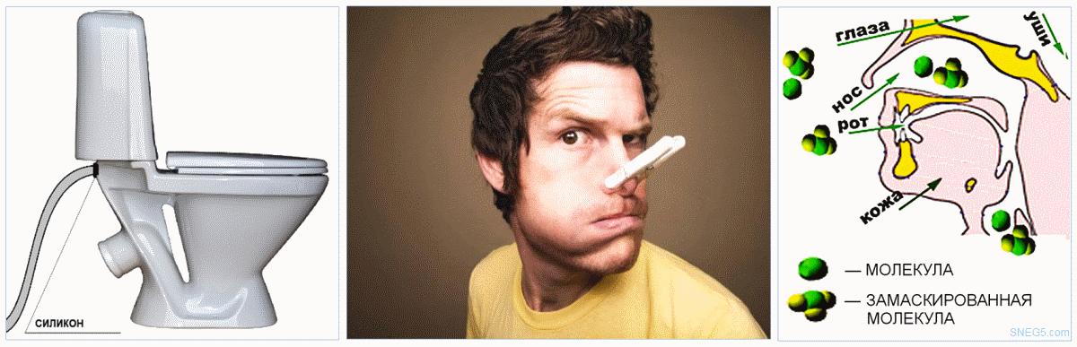 Как устранить запахи в туалете