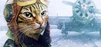 Кот-зенитчик
