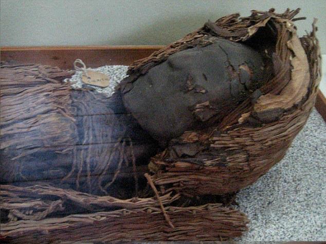 Коренные американцы - мумия относится к культуре чинчорро