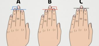 О характере расскажут пальцы — их длина и ногти