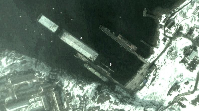 Спутниковый снимок Оленьей Губы