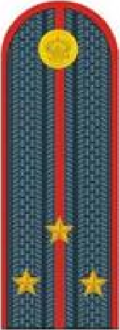 старший лейтенант полиции