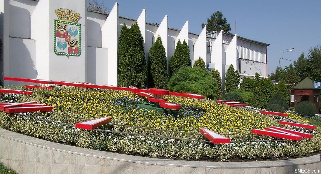 Цветочные часы в Краснодаре. Сентябрь 2017 г. 10