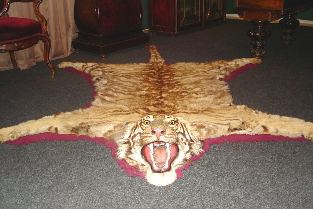 Шкура туранского тигра