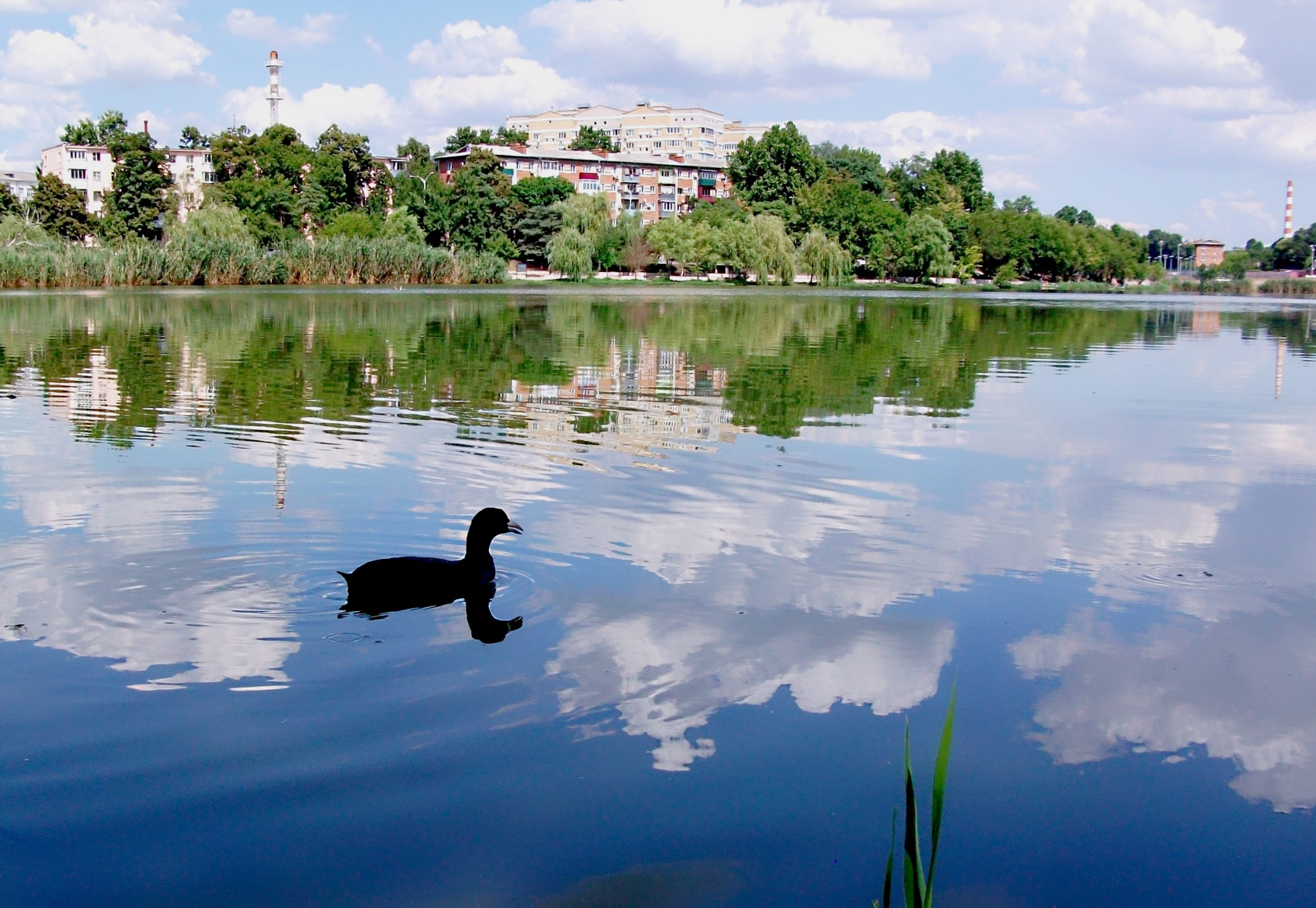 Покровские озера (Верхнее озеро)