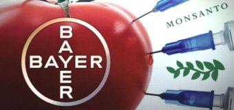 Слияние чудовищ: Bayer купила Monsanto