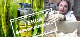 ГМО — угроза продовольственной безопасности