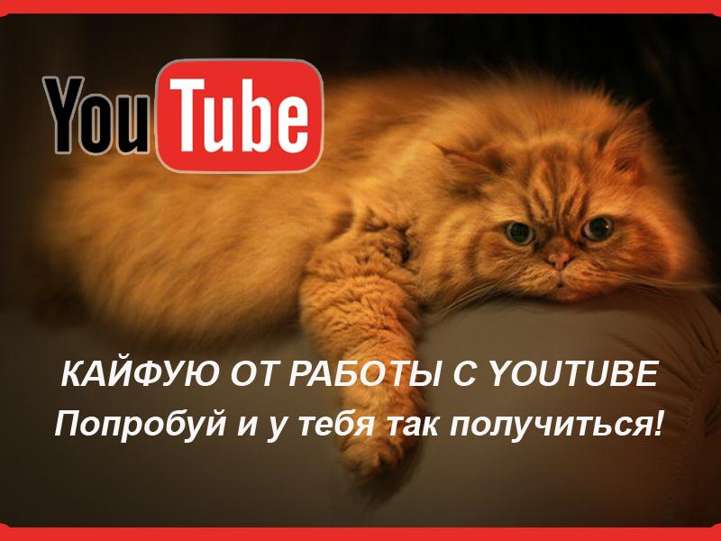 youtube-kot Работа на youtube